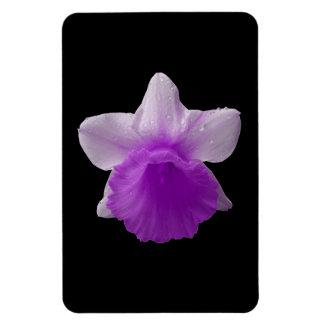 点滴注入のラッパスイセンの紫色の優れた磁石 マグネット