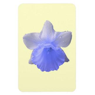 点滴注入のラッパスイセンの青い優れた磁石 マグネット