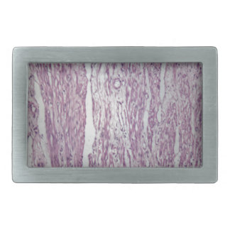 無害なtumoの人間の子宮のティッシュの細胞 長方形ベルトバックル