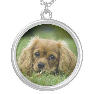 無頓着なチャールズ王スパニエル犬のネックレスのルビー シルバープレートネックレス