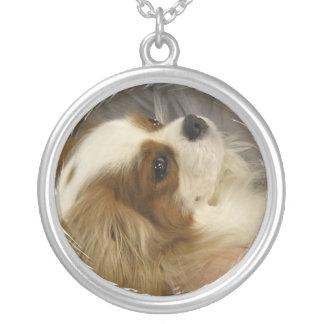 無頓着なチャールズ王スパニエル犬のネックレス シルバープレートネックレス