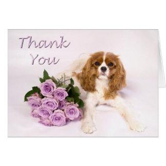 無頓着なチャールズ王スパニエル犬のバラありがとう カード