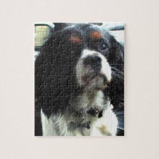 無頓着なチャールズ王スパニエル犬のパズル ジグソーパズル