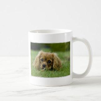 無頓着なチャールズ王スパニエル犬のルビー コーヒーマグカップ