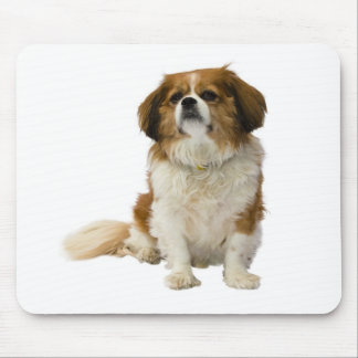 無頓着なチャールズ王スパニエル犬の小犬のマウスパッド マウスパッド