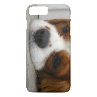 無頓着なチャールズ王スパニエル犬のiPhone 7のプラスの場合 iPhone 8 Plus/7 Plusケース