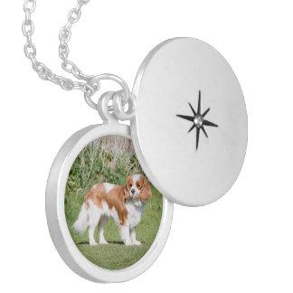 無頓着なチャールズ王スパニエル犬犬の写真のロケット シルバープレートネックレス