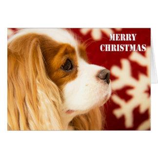 無頓着なチャールズSnowflake王のクリスマスカード カード