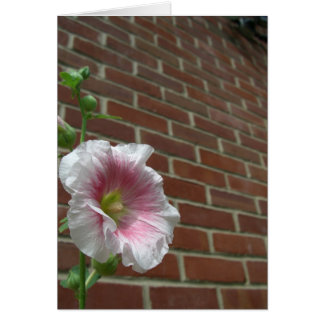 煉瓦に対する花 カード