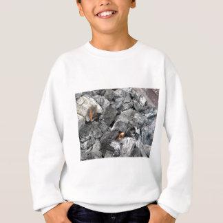 煙る非常に熱い木炭 スウェットシャツ
