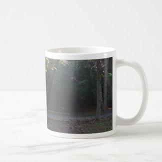 照らされたベンチ コーヒーマグカップ
