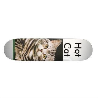 熱い猫 18.7CM ミニスケートボードデッキ
