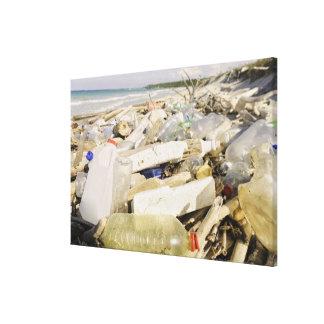 熱帯で投げ出すプラスチックボトルおよび海 キャンバスプリント