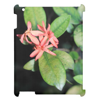 熱帯エキゾチックな珊瑚の花のKewの庭のiPadの場合 iPadカバー