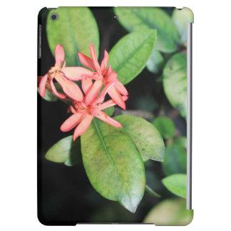 熱帯エキゾチックな珊瑚の花、KewのiPadの空気箱