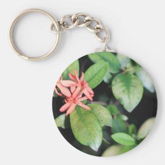 熱帯エキゾチックな珊瑚の花、Kewはキーホルダー庭いじりをします キーホルダー