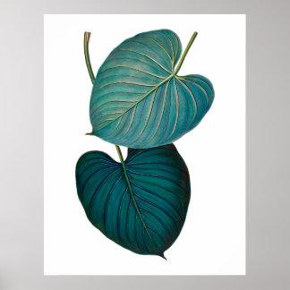 熱帯エキゾチックなphilodendronの葉 ポスター