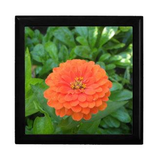 熱帯オレンジ花の花のハワイの記念品箱 ギフトボックス