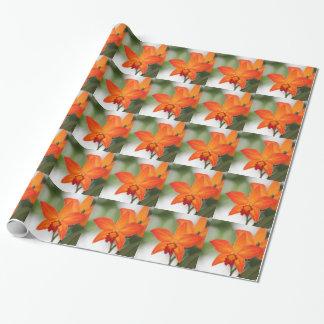 熱帯オレンジ蘭の包装紙 ラッピングペーパー