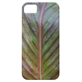熱帯カンナの葉のiphoneの場合 iPhone SE/5/5s ケース