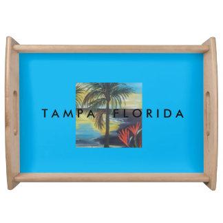 熱帯トレイタンパ、フロリダ トレー