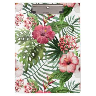 熱帯ハイビスカスによっては群葉パターンが開花します クリップボード