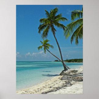 熱帯ビーチポスター ポスター