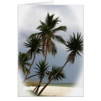 熱帯ビーチ カード