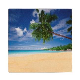 熱帯ビーチ|セイシェル ウッドコースター
