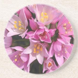 熱帯ピンクおよび黄色い花 コースター