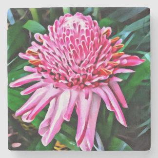 熱帯ピンクのショウガの花のコースター ストーンコースター