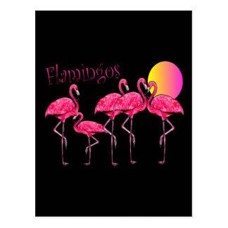 熱帯フラミンゴの芸術のギフト ポストカード