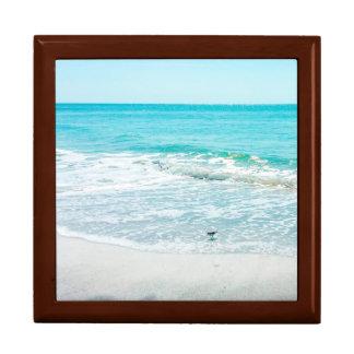 熱帯フロリダのビーチの砂の海洋波のシギ ギフトボックス