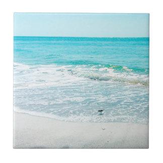熱帯フロリダのビーチの砂の海洋波のシギ 正方形タイル小
