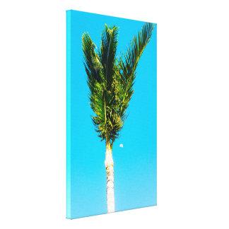 熱帯ヤシの木 キャンバスプリント