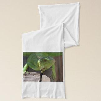 熱帯地方のイグアナ スカーフ
