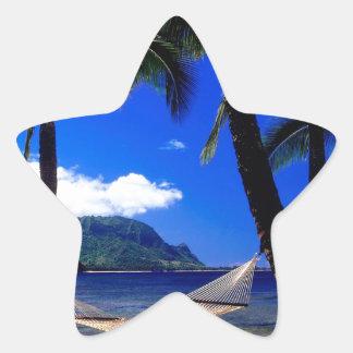 熱帯島の午後の昼寝カウアイ島ハワイ 星シール