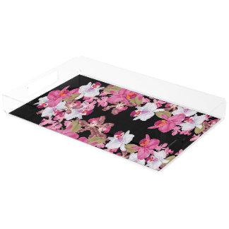 熱帯島の蘭によっては花柄が開花します アクリルトレー