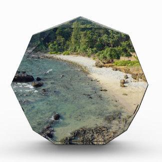 熱帯島 表彰盾