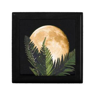 熱帯月光 ギフトボックス