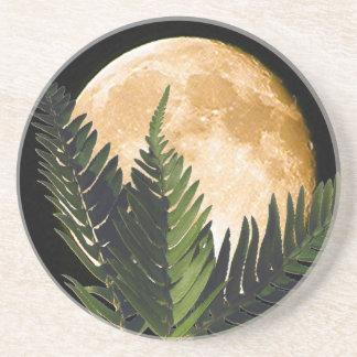 熱帯月光 コースター