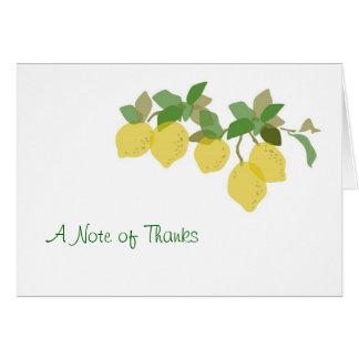 熱帯柑橘類のサンキューカード カード