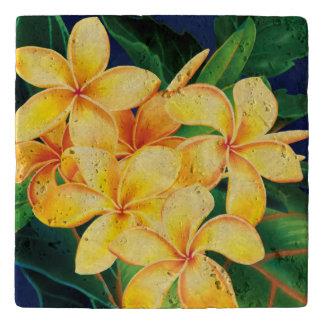 熱帯楽園のハイビスカスのハワイ語 トリベット