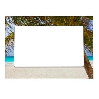 熱帯楽園のビーチ マグネットフレーム
