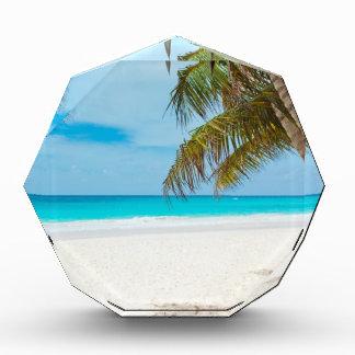 熱帯楽園のビーチ 表彰盾