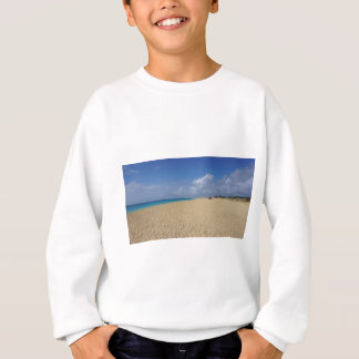 熱帯楽園 スウェットシャツ