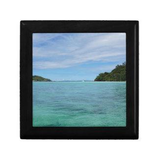 熱帯海 ギフトボックス