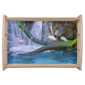 熱帯滝、鳥 トレー
