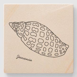 熱帯石造りのコースターを引くJunoniaの貝殻 ストーンコースター