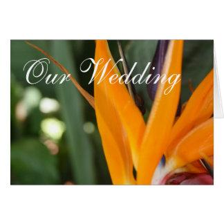 熱帯結婚式招待状カード極楽鳥 カード